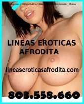 803558660 chicas muy morbosas y calientes shows webcam y videollamada