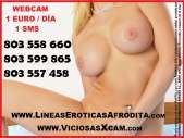 Buscas diversion y placer 803558660 y webcam 1 sms