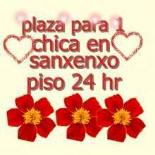 Plaza para 1 chica en sanxenxo 695 969 456