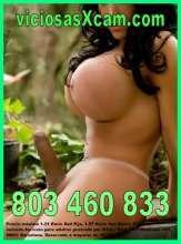 Linea erotica travesti almeria 803 460 833 y videollamada