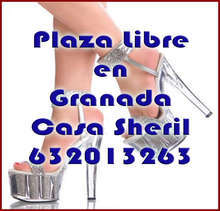 Plaza libre pago diario el 60 altos ingresos casa sheril
