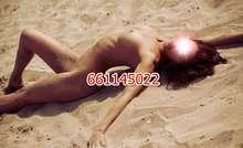 Novedad valenciana 661 145 022