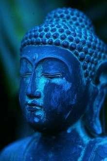 Dejate llevar la magia del masaje hindu