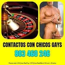 Ruleta gay chicos gays en linea erotica