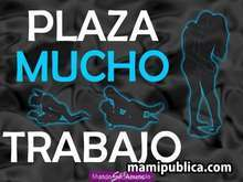 Plaza libre en almeria