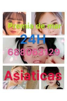 Nuevas asiaticas 24horas en premia de mar 688063129