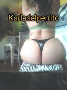 Karladelperrito tengo perrito real muy mordelon 2224383532